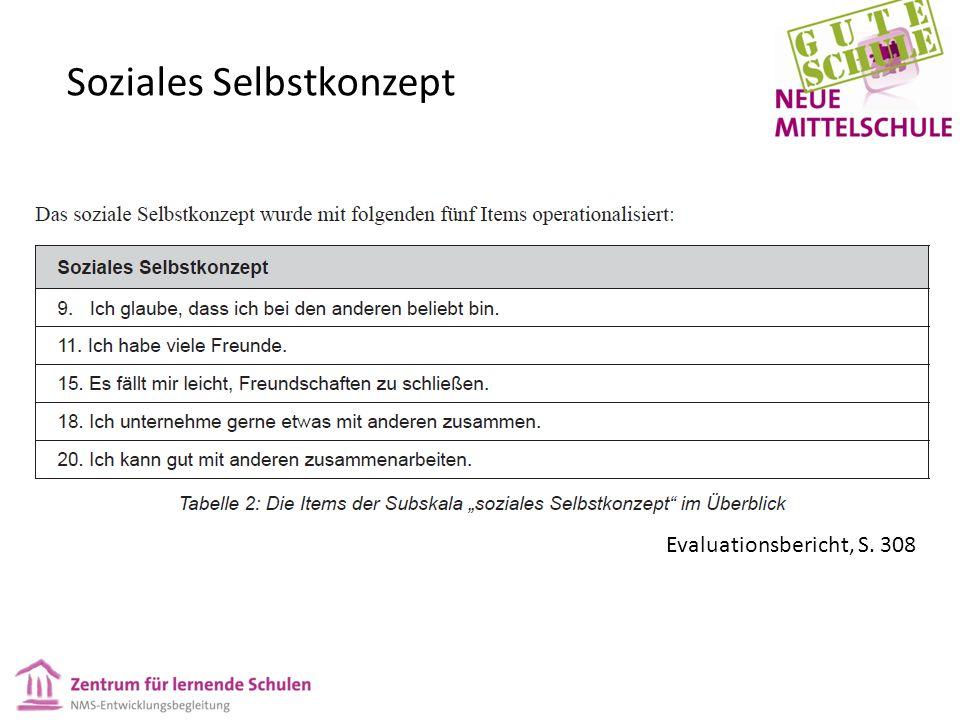 Soziales Selbstkonzept Evaluationsbericht, S. 308