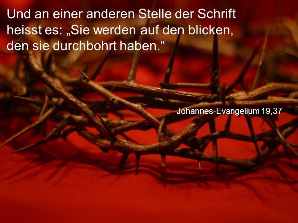 """Johannes-Evangelium 19,37 Und an einer anderen Stelle der Schrift heisst es: """"Sie werden auf den blicken, den sie durchbohrt haben."""
