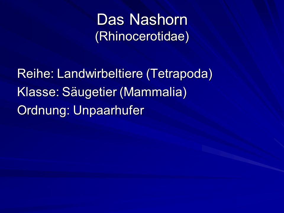 Das Nashorn (Rhinocerotidae) Reihe: Landwirbeltiere (Tetrapoda) Klasse: Säugetier (Mammalia) Ordnung: Unpaarhufer