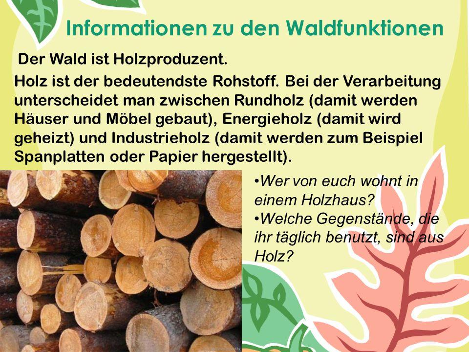 Der Wald ist Holzproduzent. Holz ist der bedeutendste Rohstoff. Bei der Verarbeitung unterscheidet man zwischen Rundholz (damit werden Häuser und Möbe