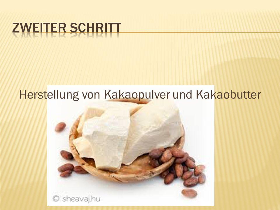 Herstellung von Kakaopulver und Kakaobutter
