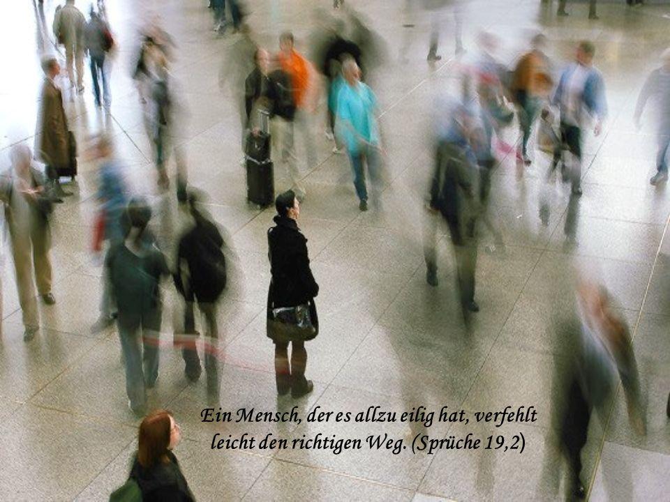 Ein Mensch, der es allzu eilig hat, verfehlt leicht den richtigen Weg. (Sprüche 19,2 )