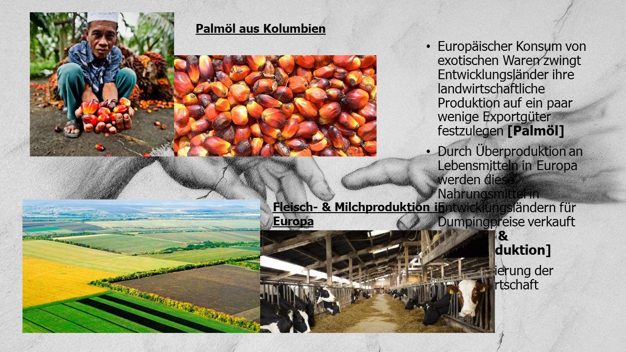 Europäischer Konsum von exotischen Waren zwingt Entwicklungsländer ihre landwirtschaftliche Produktion auf ein paar wenige Exportgüter festzulegen [Pa