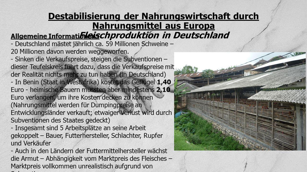 Destabilisierung der Nahrungswirtschaft durch Nahrungsmittel aus Europa Fleischproduktion in Deutschland Allgemeine Informationen : - Deutschland mäst