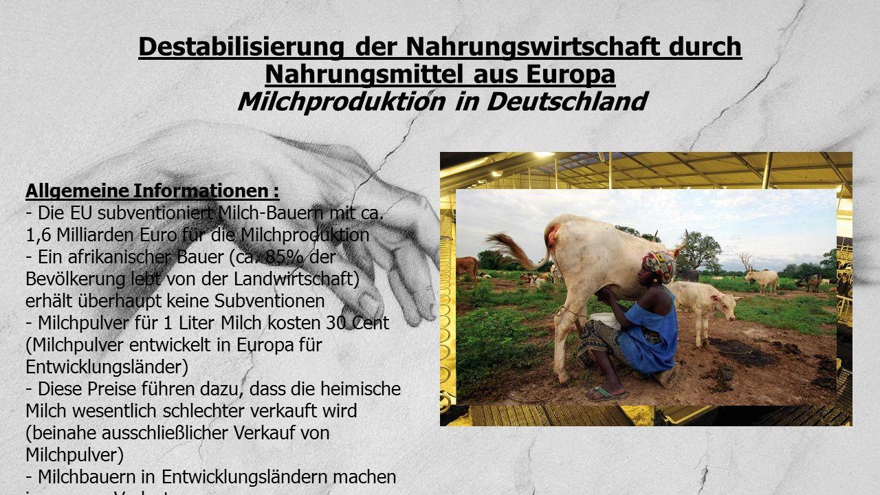 Destabilisierung der Nahrungswirtschaft durch Nahrungsmittel aus Europa Milchproduktion in Deutschland Allgemeine Informationen : - Die EU subventioni
