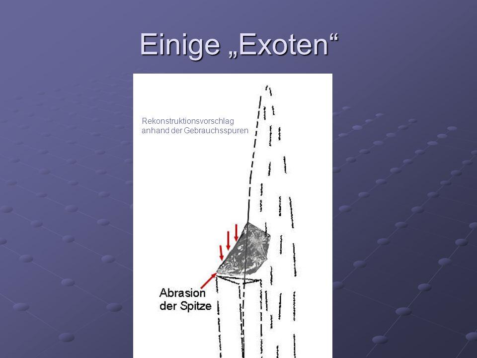 """Einige """"Exoten"""" Rekonstruktionsvorschlag anhand der Gebrauchsspuren"""