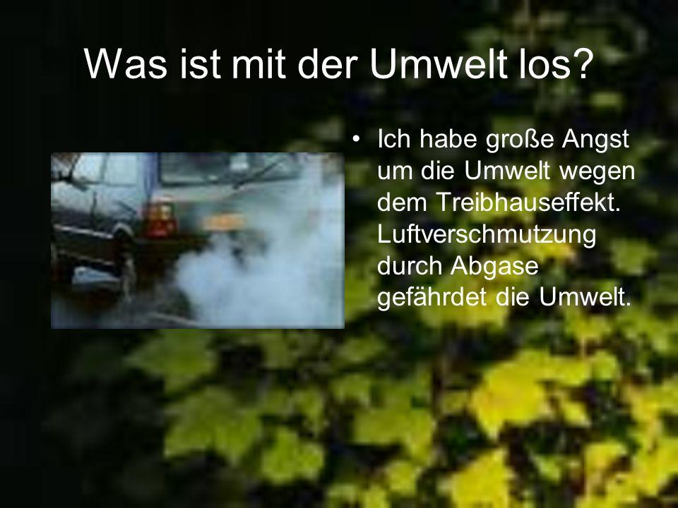 Was ist mit der Umwelt los? Ich habe große Angst um die Umwelt wegen dem Treibhauseffekt. Luftverschmutzung durch Abgase gefährdet die Umwelt.
