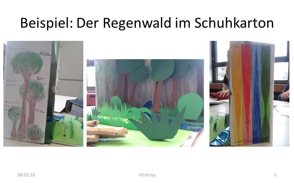 Beispiel: Der Regenwald im Schuhkarton 08.03.16Mintrop5