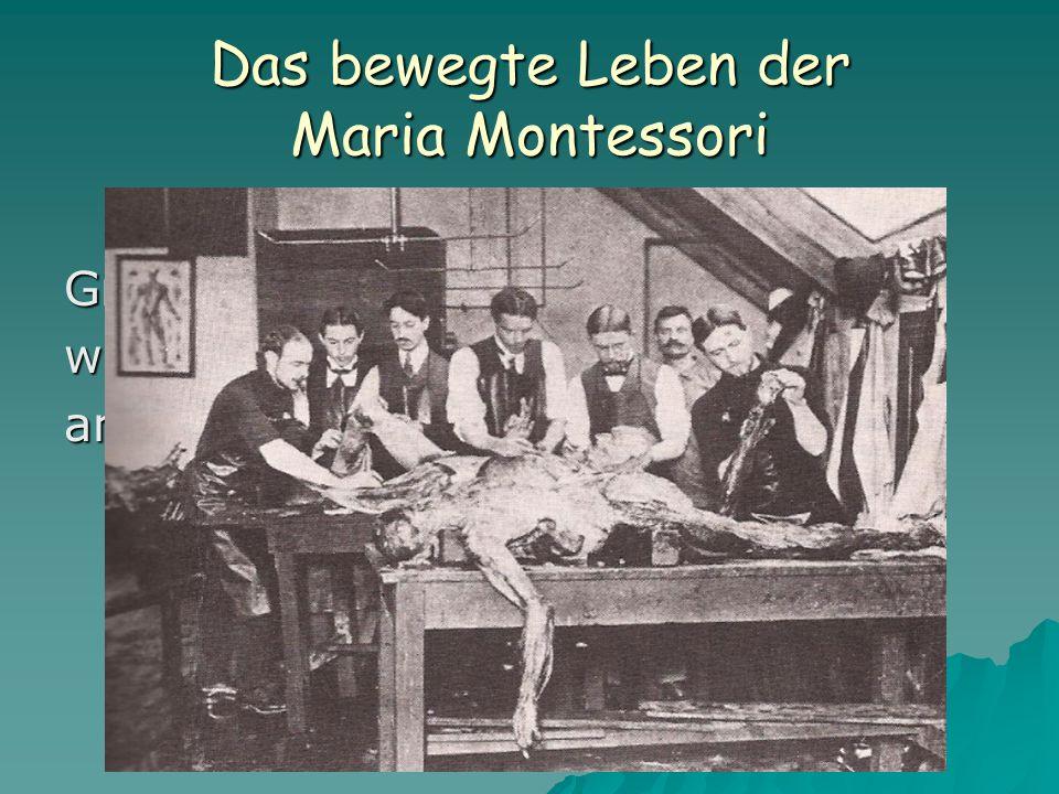 Das bewegte Leben der Maria Montessori Größte Schwierigkeiten während der Arbeit am anatomischen Institut
