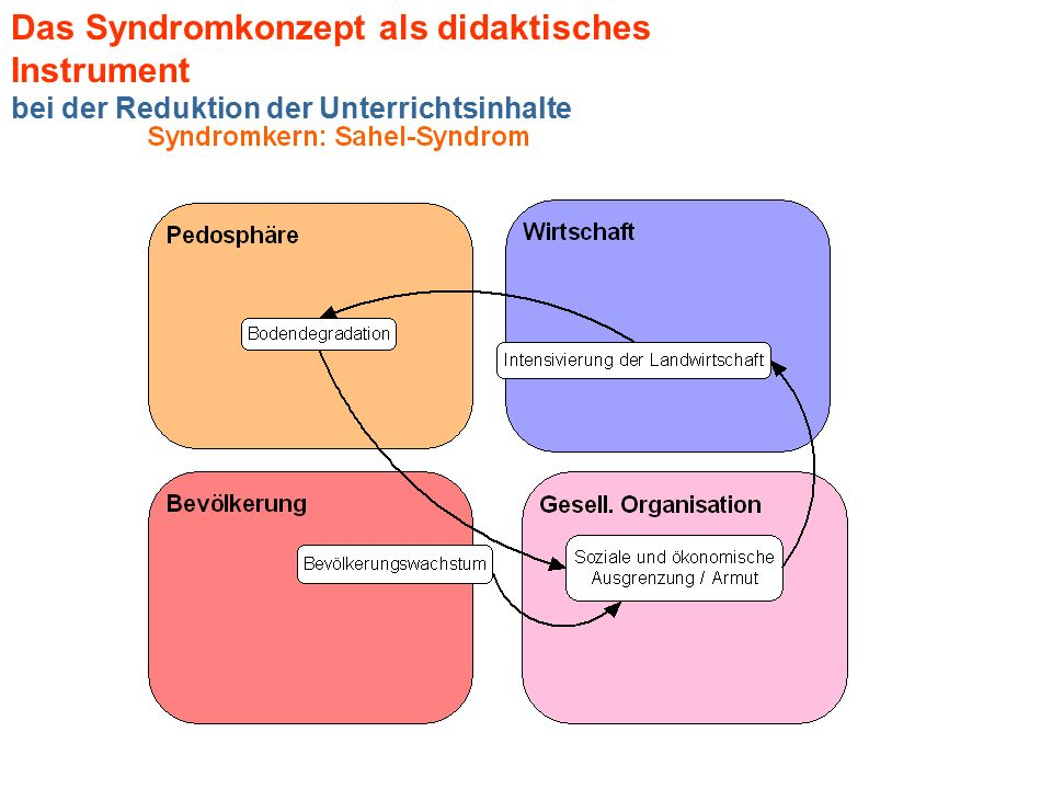 Das Syndromkonzept als didaktisches Instrument bei der Reduktion der Unterrichtsinhalte