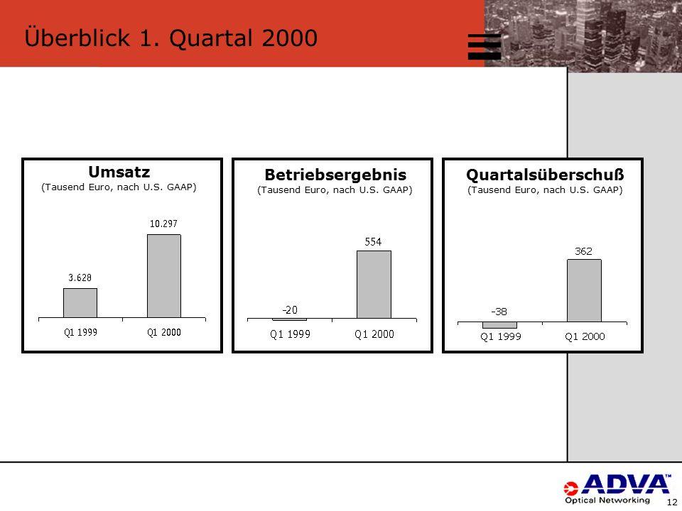 12 Überblick 1. Quartal 2000 Umsatz (Tausend Euro, nach U.S.