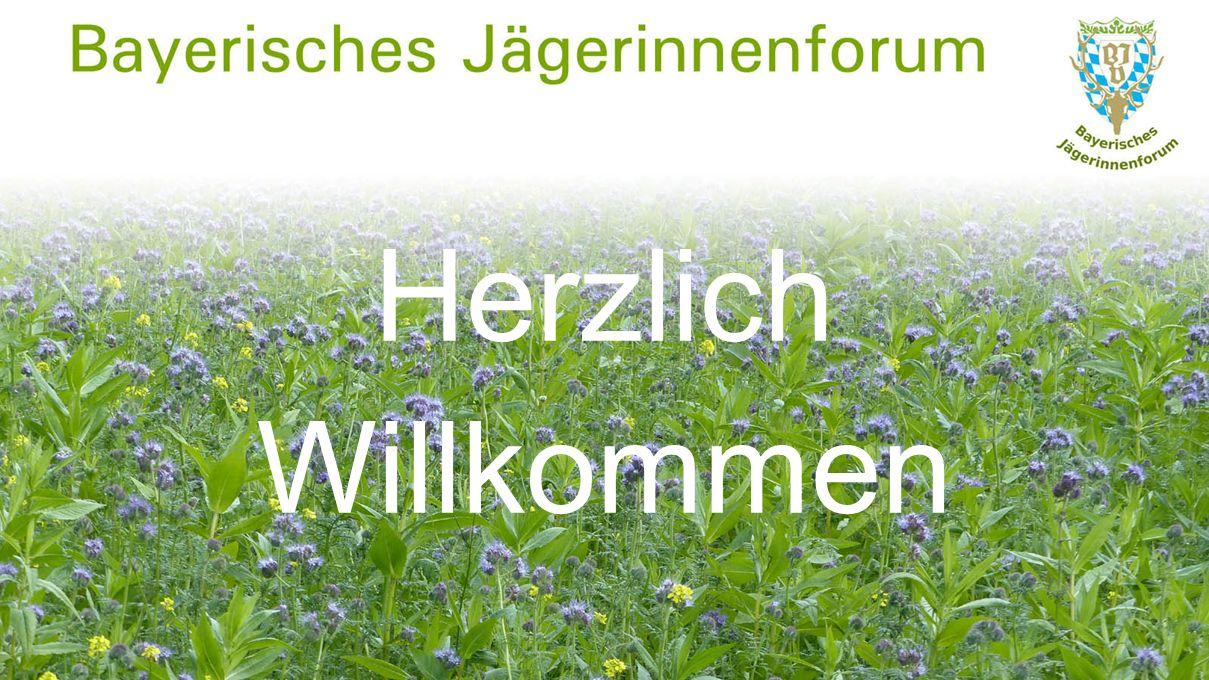 Natur und Umwelt u.a.Wildobst-Pflanzaktionen, Wildrettung (Kids for Kitz),...