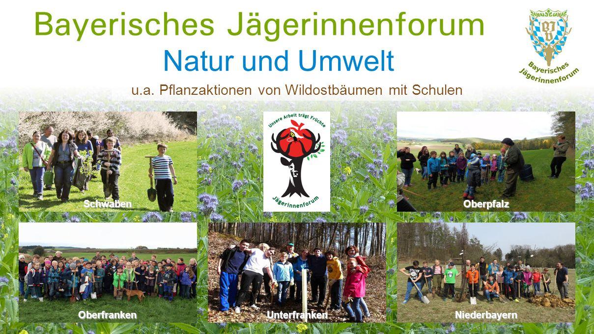 Natur und Umwelt Niederbayern OberpfalzSchwaben Oberfranken u.a.