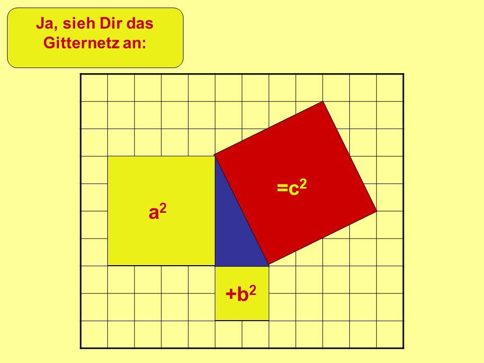 =c 2 +b 2 a2a2 Ja, sieh Dir das Gitternetz an: