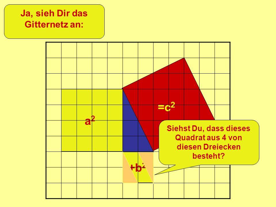 =c 2 +b 2 a2a2 Ja, sieh Dir das Gitternetz an: Siehst Du, dass dieses Quadrat aus 4 von diesen Dreiecken besteht?