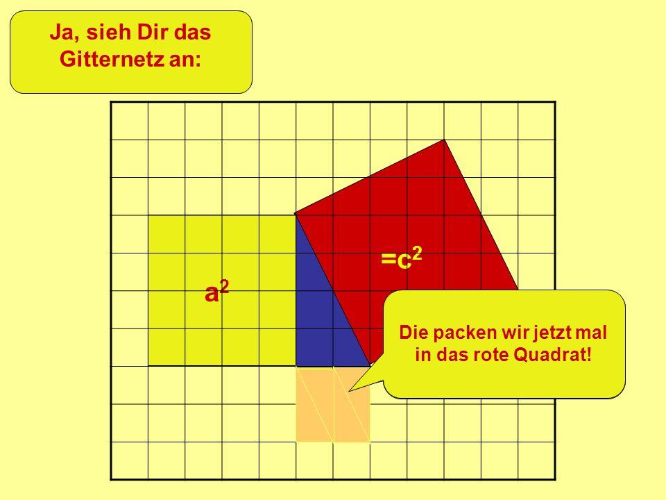 =c 2 +b 2 a2a2 Ja, sieh Dir das Gitternetz an: Siehst Du, dass dieses Quadrat aus 4 von diesen Dreiecken besteht? Die packen wir jetzt mal in das rote