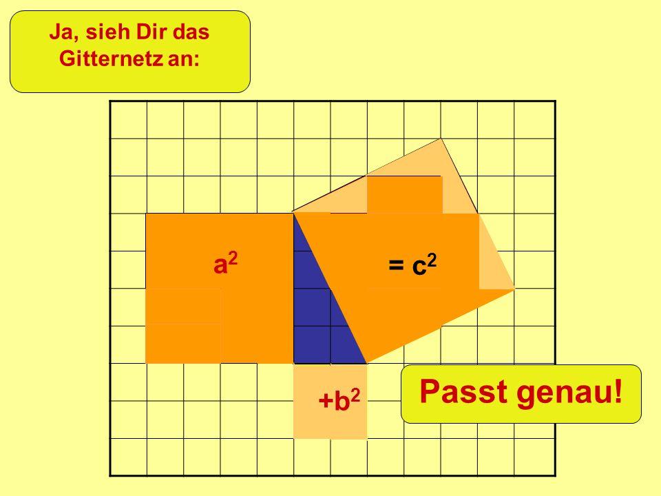 =c 2 +b 2 a2a2 Ja, sieh Dir das Gitternetz an: = c 2 +b 2 a2a2 Passt genau!