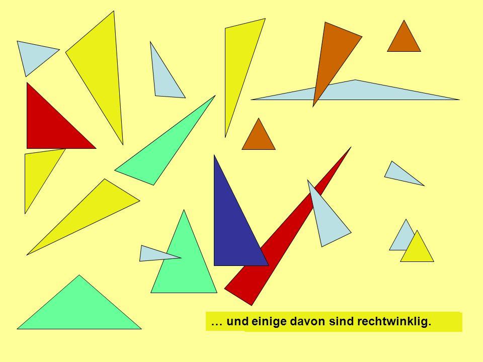 Es gibt unendlich viele Dreiecke …. … und einige davon sind rechtwinklig.