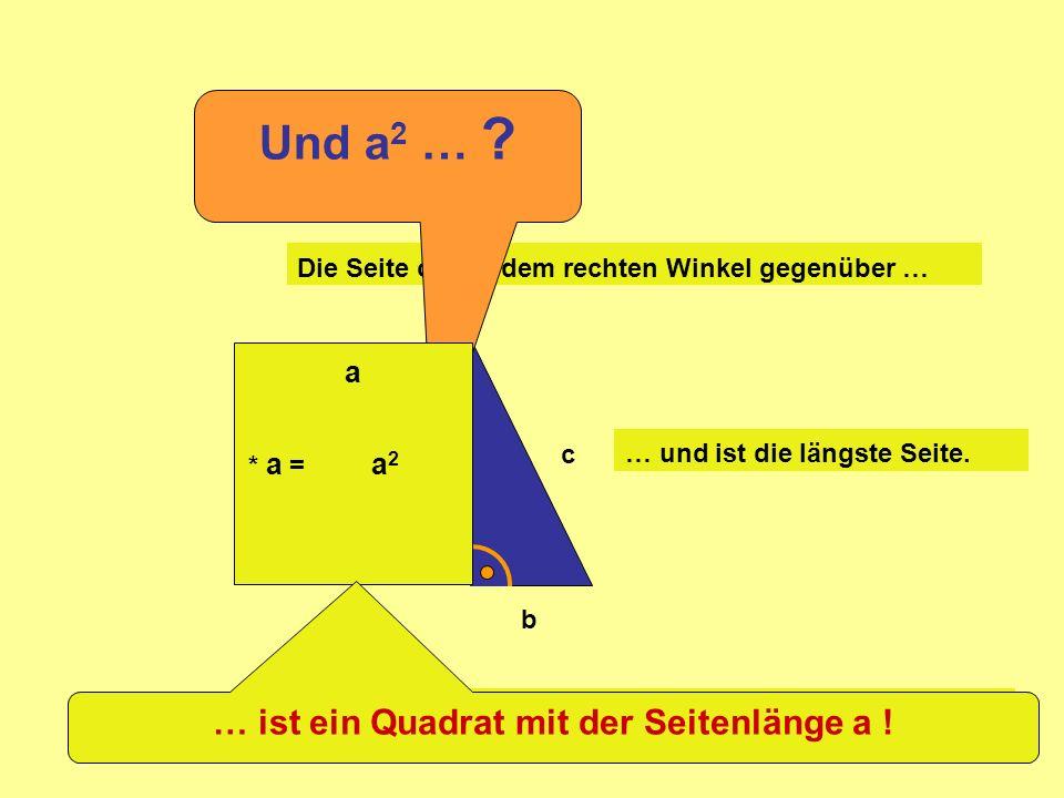=c 2 +b 2 a2a2 Ja, sieh Dir das Gitternetz an: =c 2 +b 2 a2a2 Passt genau!