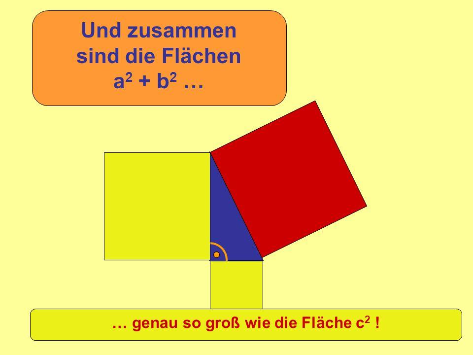 =c 2 +b 2 a2a2 Die Summe der Quadrate über den kurzen Seiten im rechtwinkligen Dreieck ist so groß wie die Fläche des Quadrates über der langen Seite.