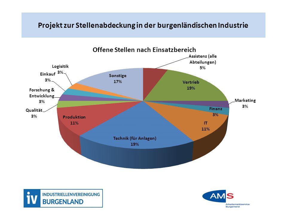 Projekt zur Stellenabdeckung in der burgenlädnsichen Industrie