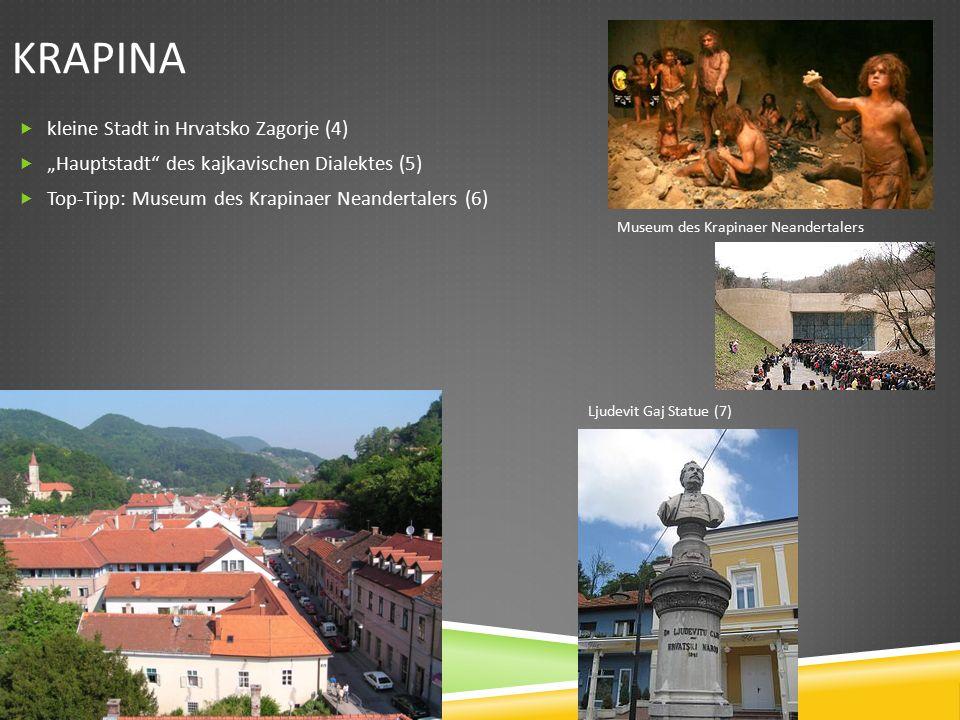 """KRAPINA  kleine Stadt in Hrvatsko Zagorje (4)  """"Hauptstadt des kajkavischen Dialektes (5)  Top-Tipp: Museum des Krapinaer Neandertalers (6) Museum des Krapinaer Neandertalers Ljudevit Gaj Statue (7)"""