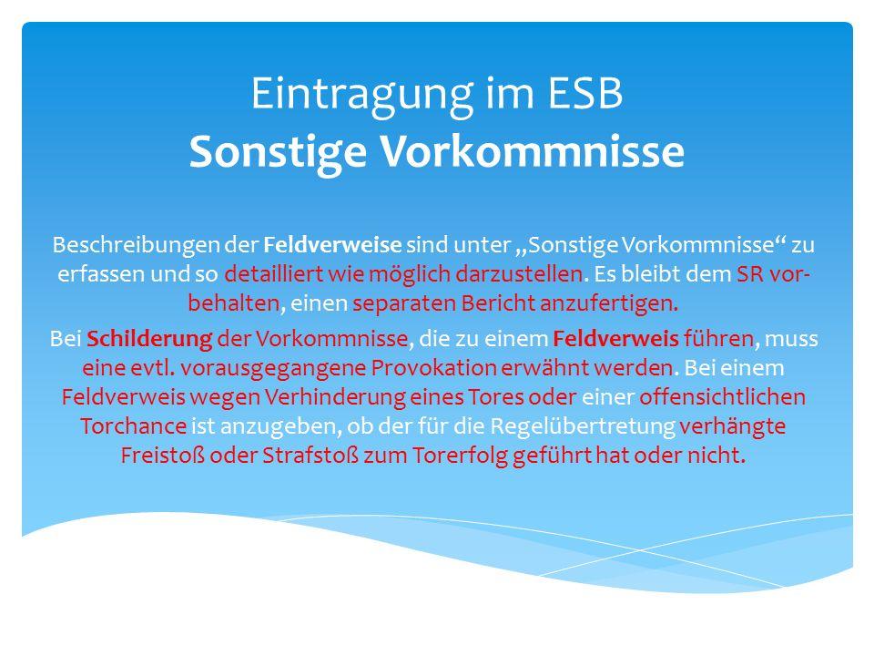 """Eintragung im ESB Sonstige Vorkommnisse Beschreibungen der Feldverweise sind unter """"Sonstige Vorkommnisse zu erfassen und so detailliert wie möglich darzustellen."""
