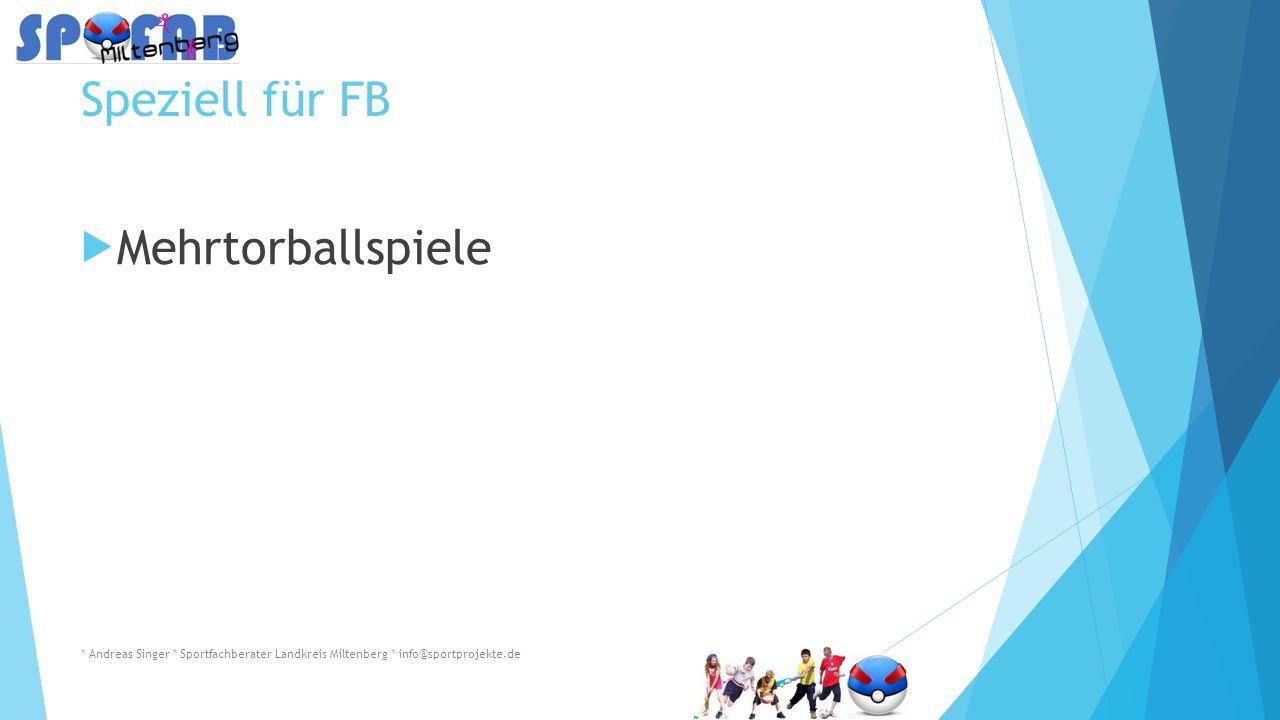 Speziell für FB  Mehrtorballspiele * Andreas Singer * Sportfachberater Landkreis Miltenberg * info@sportprojekte.de