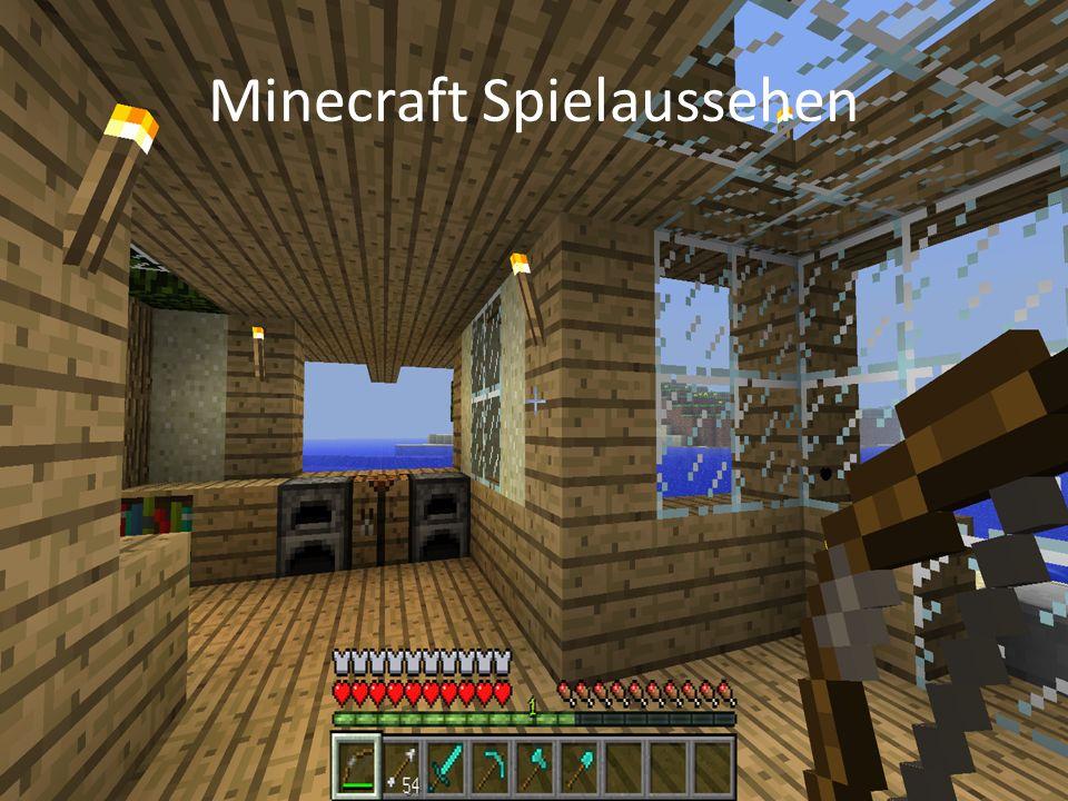 Minecraft Spielaussehen