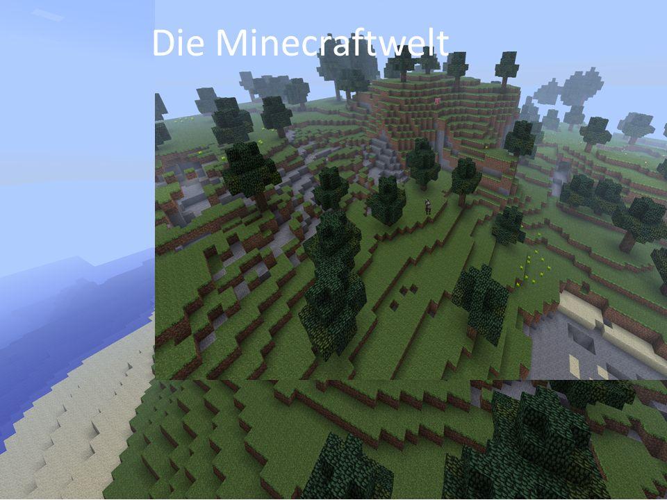 Die Minecraftwelt