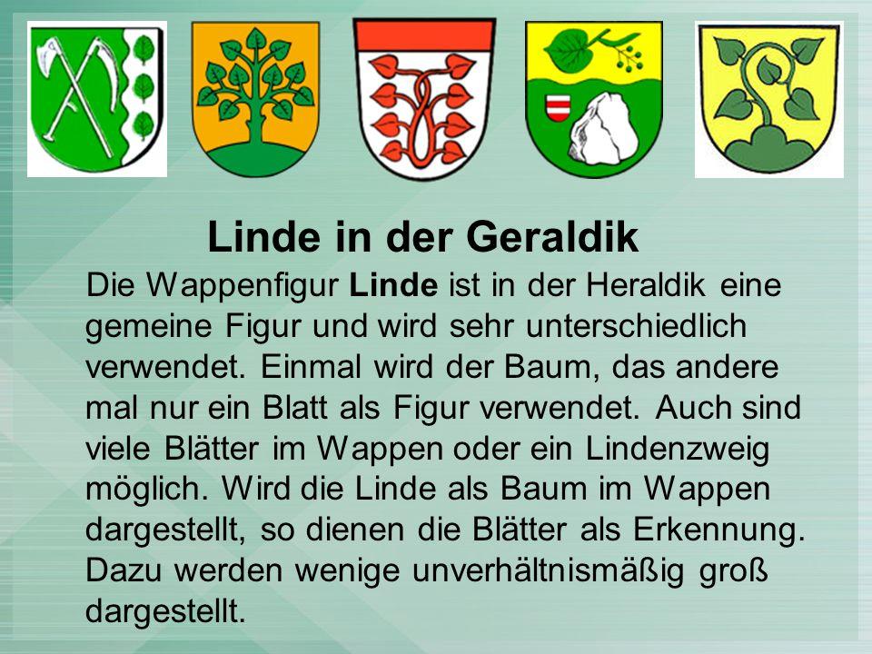 Die Wappenfigur Linde ist in der Heraldik eine gemeine Figur und wird sehr unterschiedlich verwendet.