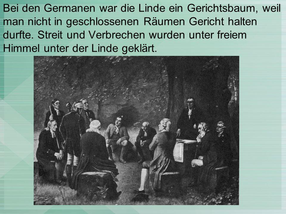 Bei den Germanen war die Linde ein Gerichtsbaum, weil man nicht in geschlossenen Räumen Gericht halten durfte.