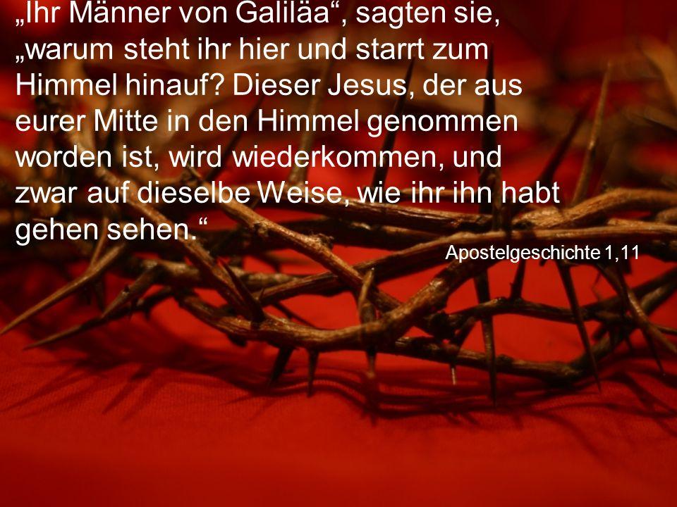 """Apostelgeschichte 1,11 """"Ihr Männer von Galiläa"""", sagten sie, """"warum steht ihr hier und starrt zum Himmel hinauf? Dieser Jesus, der aus eurer Mitte in"""