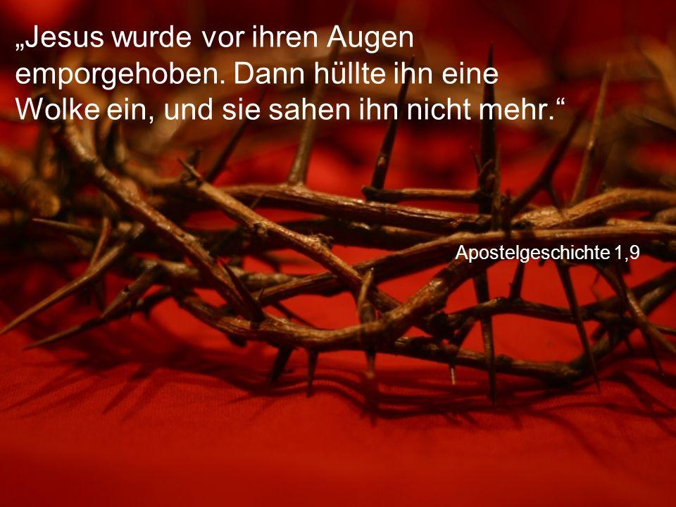 """Apostelgeschichte 1,9 """"Jesus wurde vor ihren Augen emporgehoben. Dann hüllte ihn eine Wolke ein, und sie sahen ihn nicht mehr."""""""