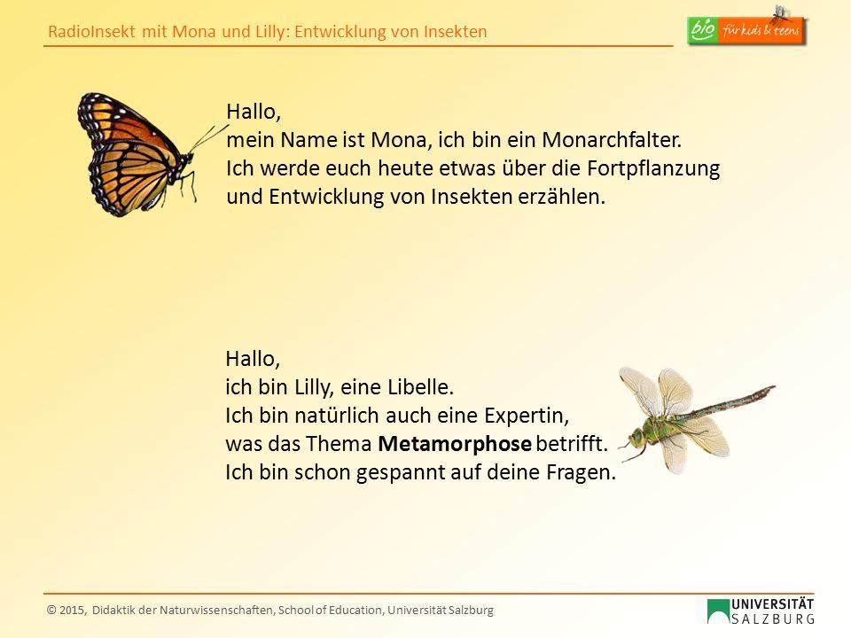 RadioInsekt mit Mona und Lilly: Entwicklung von Insekten © 2015, Didaktik der Naturwissenschaften, School of Education, Universität Salzburg Hallo, me
