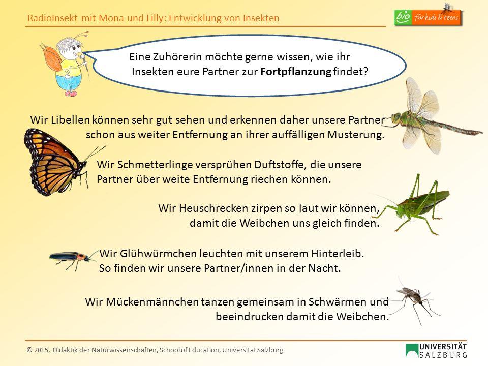 RadioInsekt mit Mona und Lilly: Entwicklung von Insekten © 2015, Didaktik der Naturwissenschaften, School of Education, Universität Salzburg Wir Schme