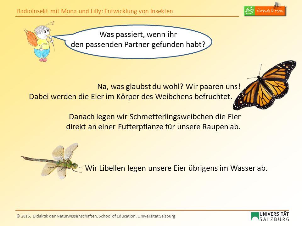 RadioInsekt mit Mona und Lilly: Entwicklung von Insekten © 2015, Didaktik der Naturwissenschaften, School of Education, Universität Salzburg Was passi