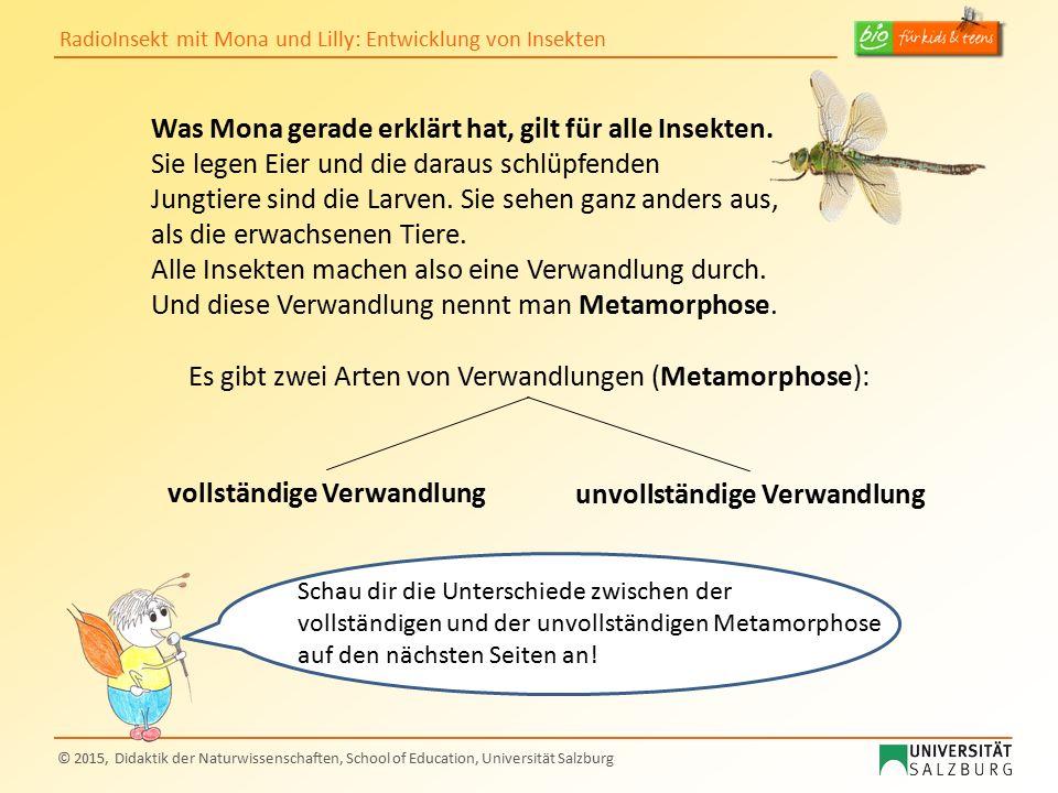 RadioInsekt mit Mona und Lilly: Entwicklung von Insekten © 2015, Didaktik der Naturwissenschaften, School of Education, Universität Salzburg Was Mona