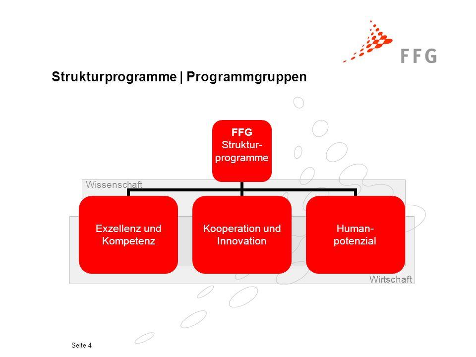 Seite 4 Strukturprogramme | Programmgruppen Wissenschaft Wirtschaft