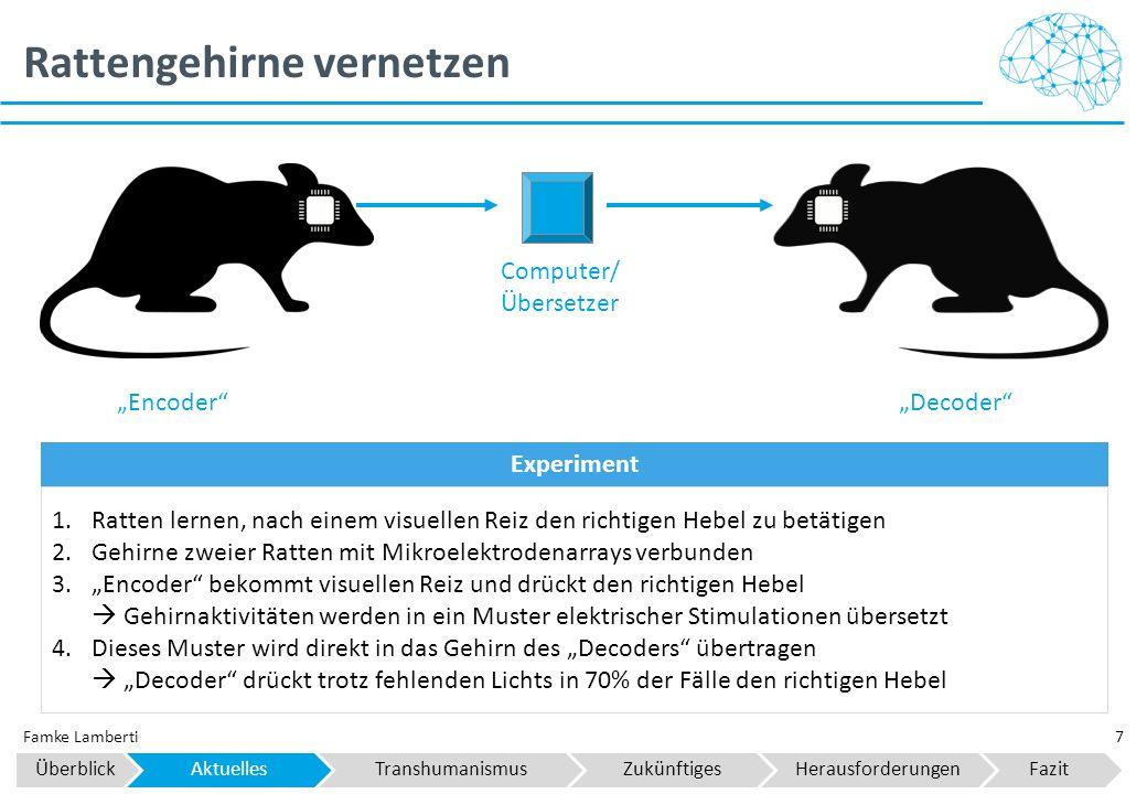 """Rattengehirne vernetzen 7Famke Lamberti """"Decoder""""""""Encoder"""" Computer/ Übersetzer 1.Ratten lernen, nach einem visuellen Reiz den richtigen Hebel zu betä"""