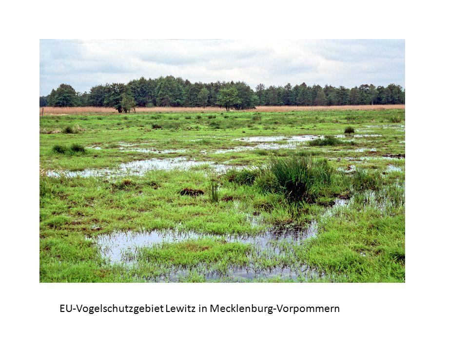 EU-Vogelschutzgebiet Lewitz in Mecklenburg-Vorpommern