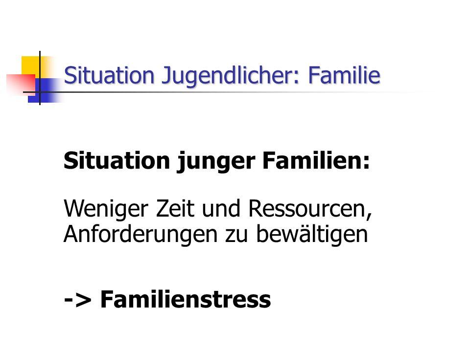 Situation Jugendlicher: Familie Situation junger Familien: Weniger Zeit und Ressourcen, Anforderungen zu bewältigen -> Familienstress