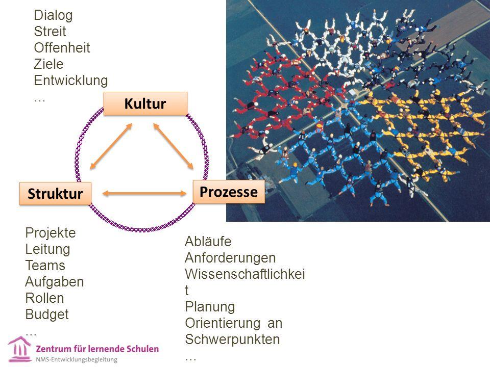Kultur Prozesse Struktur Projekte Leitung Teams Aufgaben Rollen Budget...