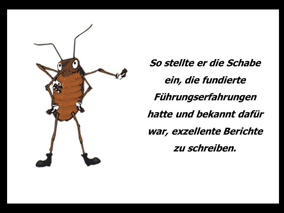 Die Abteilung, in der die Ameise arbeitet ist heute ein trostloser Ort, an dem niemand mehr lacht und jeder frustriert ist …