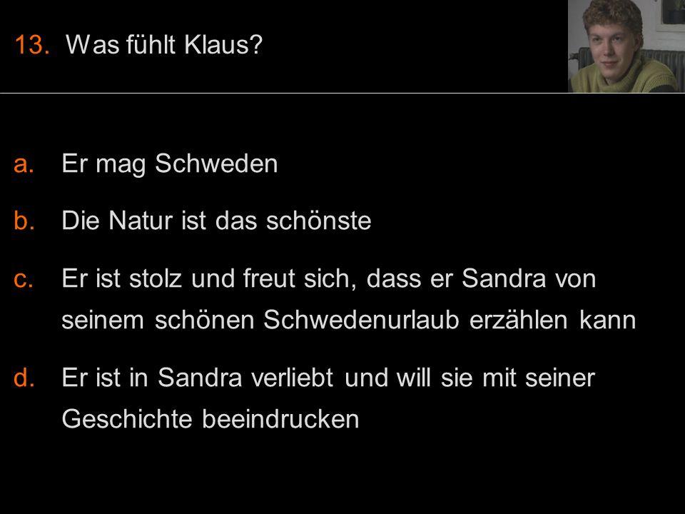 13. Was fühlt Klaus.