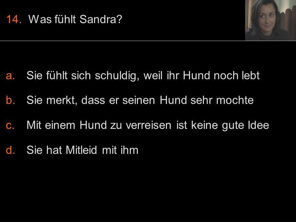 14. Was fühlt Sandra.