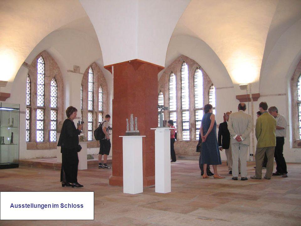 Ausstellungen im Schloss