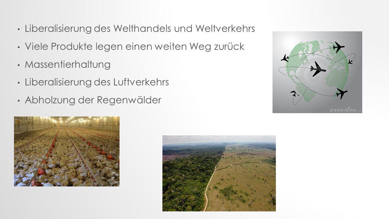 Liberalisierung des Welthandels und Weltverkehrs Viele Produkte legen einen weiten Weg zurück Massentierhaltung Liberalisierung des Luftverkehrs Abholzung der Regenwälder