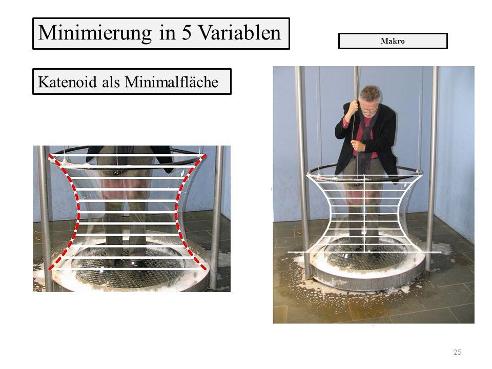Minimierung in 5 Variablen Katenoid als Minimalfläche 25 Makro