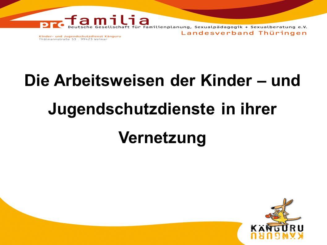 1.Arbeitsgrundsätze der Kinder- und Jugendschutzdienste 2.